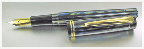 Worcester Sentinel Deluxe Fountain Pen
